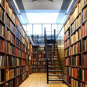 Библиотеки Инзера