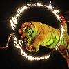 Цирки в Инзере